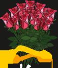 Бери-Дари-иконки-сайта
